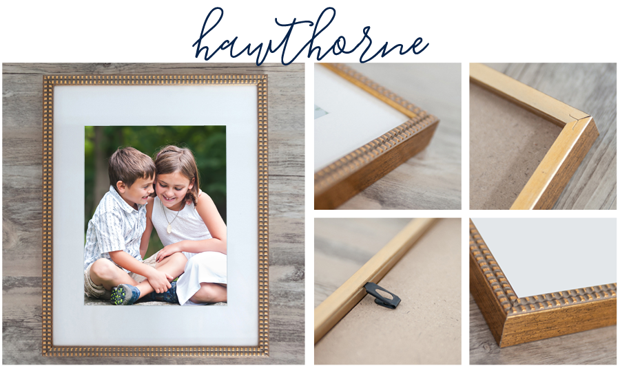 Sarah Pratt Photography now offers Hawthorne signature frame perfect for family portraits.