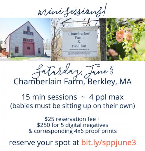 Portrait mini sessions being held June 3 in Berkley MA.