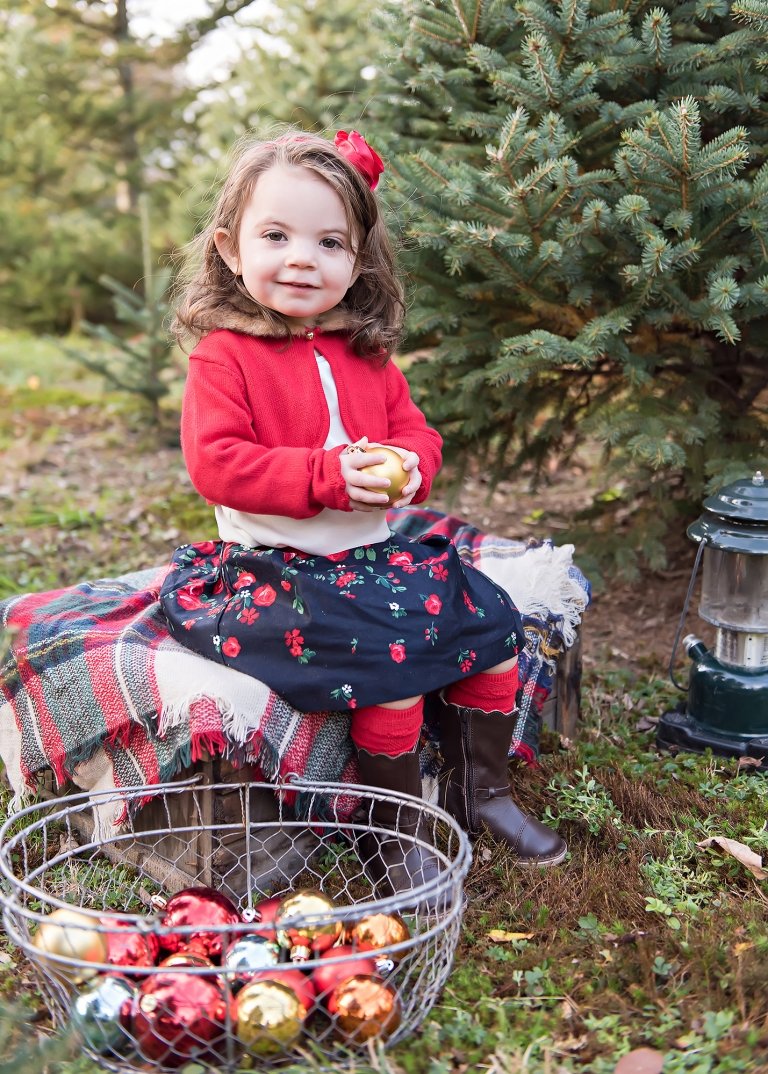 Toddler girl sitting on wooden box in front of christmas tree at a christmas tree farm in North Attleboro, MA